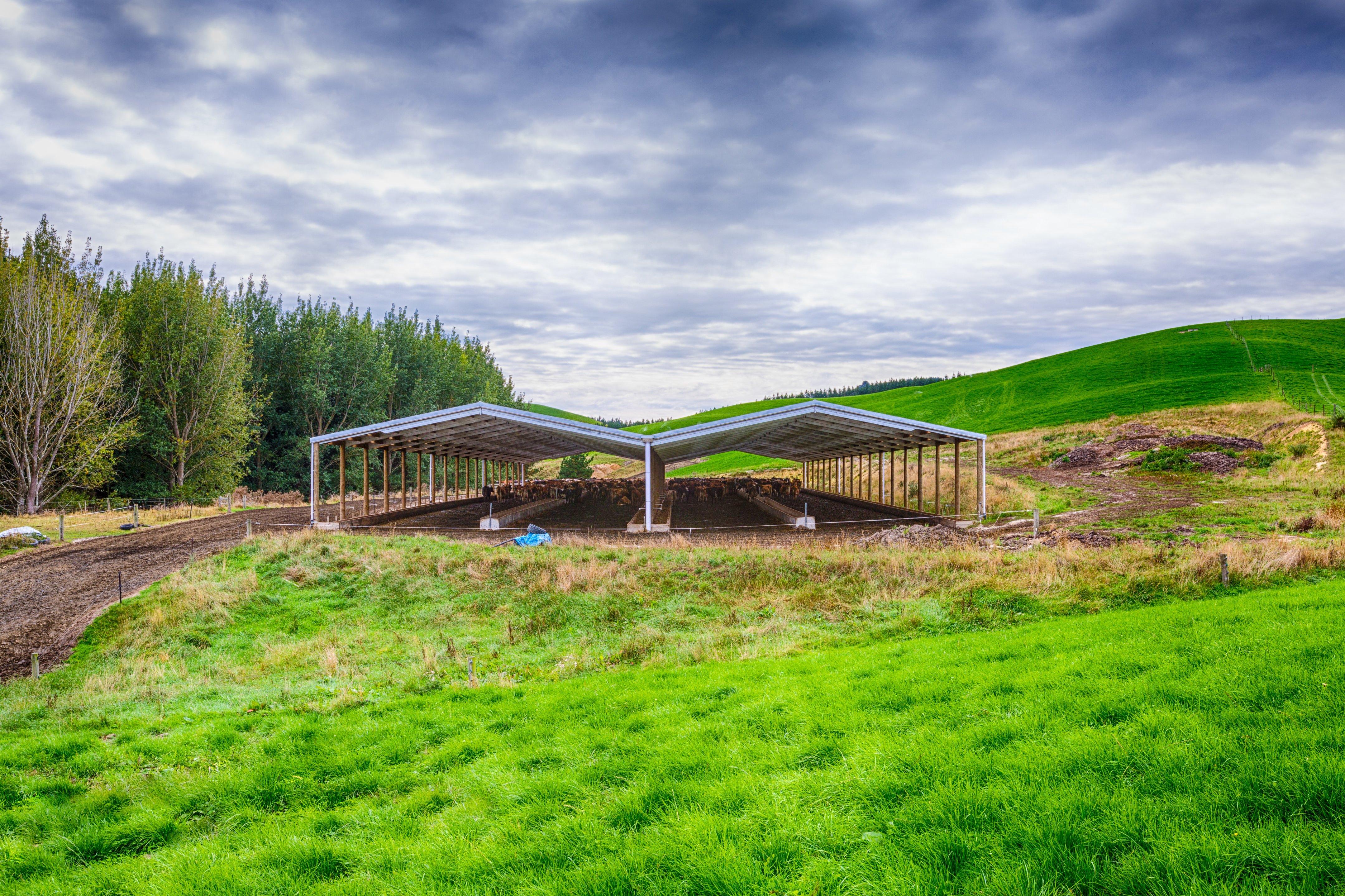 Alpine animal shelter shed in the NZ landscape