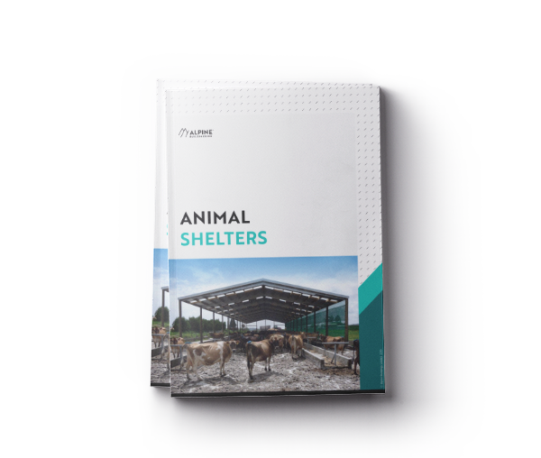 mockup-brochure-animal-shelters-transparent