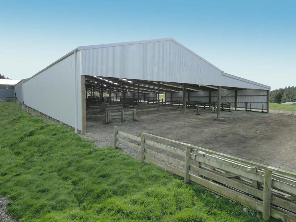 Alpine Buildings: Feed Pads, Barns, Calf Sheds, Stables