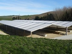 Farm shelter nz
