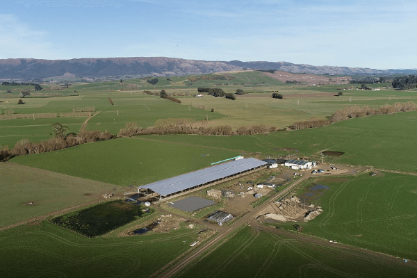 Huge animal shelters across New Zealand farms